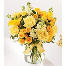 2 dozen Mixed Yellow and Orange Roses  in a Vase
