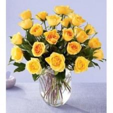 2 dozen Yellow Roses in a Vase