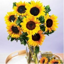 7pcs Sunflower in a Bouquet