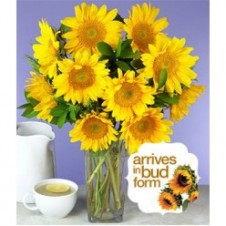 10pcs Sunflower in a Bouquet
