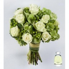 1 dozen White Roses in a Bouquet