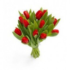 12 Pcs Red Colored Tulips In A Bouquet