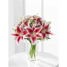 12pcs Star Gazer and Lilies in a Vase