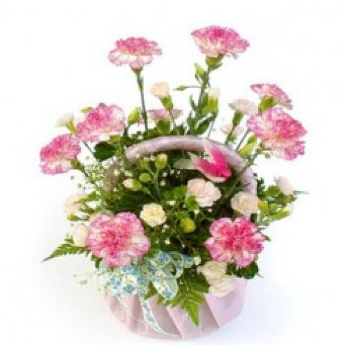 15pcs Pink Carnations in a Basket