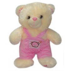 Bear with Pink Colored Jumper