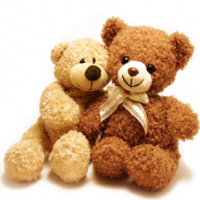 Teddy Bear,Pillows,Dolls and Animal Stuff Toys